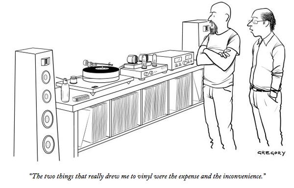 vinyl expensive inconvenient